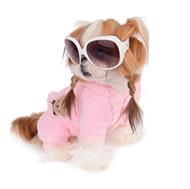 Penteado Pet: Tiara de Trança Para Cachorra Muito Fácil #VEDA10