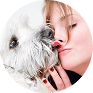 Massagem Para Cães, Cachorros, Animais: Aprenda a Massagear Seu Pet