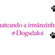 Suri, Chateando a Irmãnzinha Nala #Dogsdaloi
