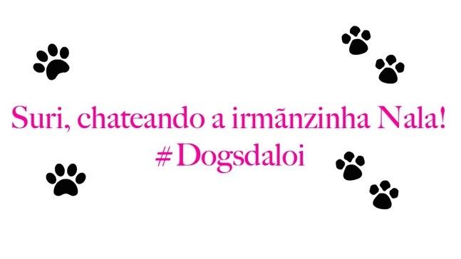 Blog Loi Curcio | www.loicurcio.com.br | Suri, Chateando a Irmãnzinha Nala #Dogsdaloi