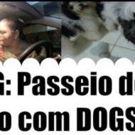 VLOG: Passeio de Carro Com as Meninas, Saúde dos Dogs e Porque Sumir