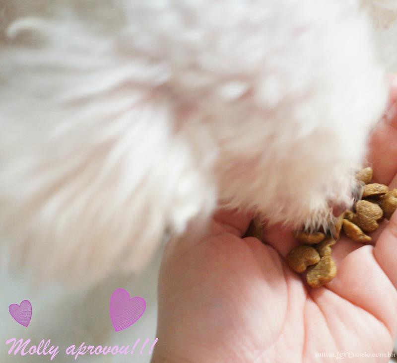Racao Premier Pet Racas Especificas Poodle Caes Adultos - Loi Curcio -3