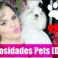 Curiosidades Pets: Canino/Dogs/Cães/Cachorros