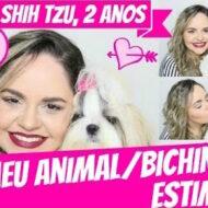 Tag: Meu Animal/Bichinho De Estimação (Kiara, Shih Tzu, 2 Anos)