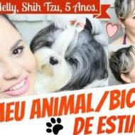 Tag: Meu Animal/Bichinho De Estimação (Melly, Shih Tzu, 5 Anos)
