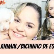 Tag: Meu Animal/Bichinho De Estimação (Molly, Poodle, 13 anos)