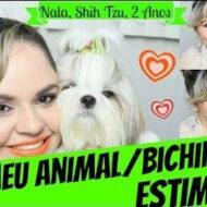 Tag: Meu Animal/Bichinho De Estimação (Nala, Shih Tzu, 2 Anos)