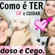 Como é TER e CUIDAR Cão Idoso e Cego (Poodle, 13 Anos, Catarata e Glaucoma)