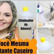 Diy – Faça Você Mesma: Desinfetante Caseiro, Eliminador de Odores, Higienizador (Cachorro/Cão/Dog/Pet/Animal) | #LóiPor31Dias 17
