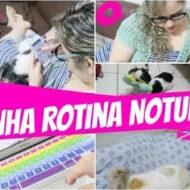 Minha Rotina Noturna (Boa Noite!) | My Night Routine | #LóiPor31Dias 23