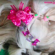 Penteado Muito Fácil Com Acessórios Fofos Para Sua Cachorrinha | #LóiPor31Dias 24