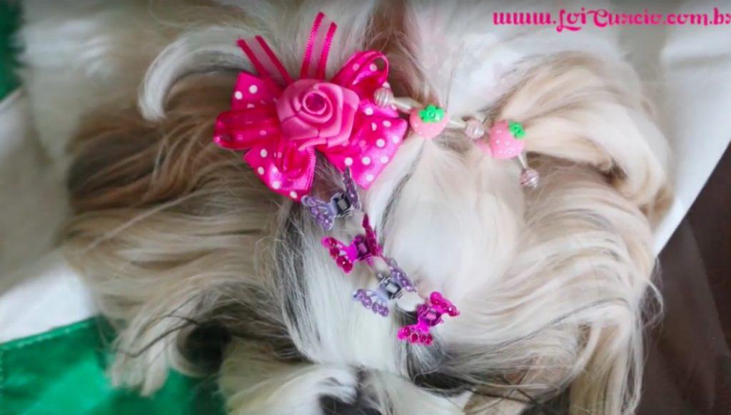 penteado-muito-facil-com-acessorios-fofos-para-sua-cachorrinha-loipor31dias-24