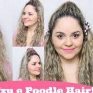 Penteados Estilo Pets: Shih Tzu e Poodle Hair