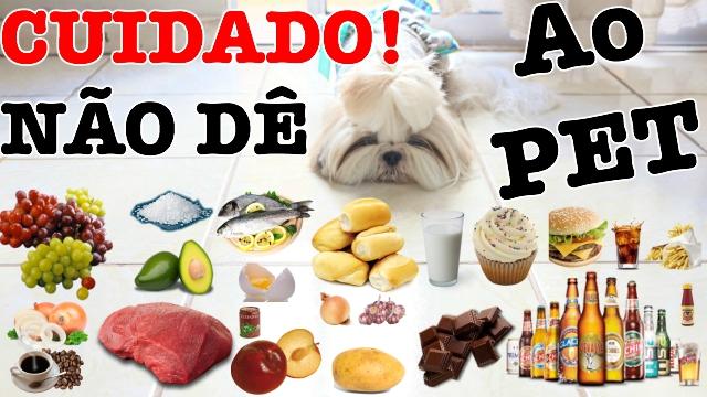 Alimentos Proibidos, Perigosos e Toxicos Para Cachorros, Gatos e Animais - Loi Curcio