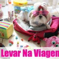 Mala de Viagem Pet (Kit Necessário – Itens Essenciais Para os Cachorros/Animais e Muitas Dicas)