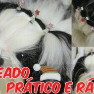 Penteado Pet (Cachorrinha) Fácil, Prático e Rápido de Fim de Ano (Natal e Ano Novo)