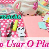 Agenda Diário Para Se Organizar | Como Usar Um Planner (Ardium Pastel Diary)