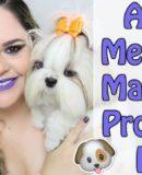 As 19 Melhores Marcas Pet | Só Os Produtos Top e Favoritos das Minhas Meninas Shih Tzu (Cadelinhas/Dogs)