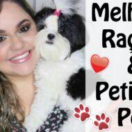 Top 5 Rações e Petiscos Pets | As Melhores das Minhas Filhas Pet Cadelinhas Shih Tzu (Testamos e Aprovamos)