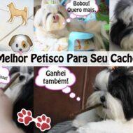 Organnact Pet Palitos Ossinhos | Suplemento Vitamínico Aminoácido Alimentar – Melhor Petisco Para Seu Cachorro ou Pet