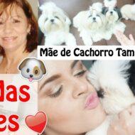 Feliz Dia das Mães Pet | Mãe de Cachorro Também É Mãe
