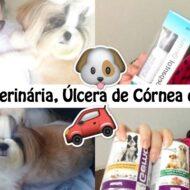 Vlog: Consulta Veterinária, Minha Filha Pet Shih Tzu Kiara Com Úlcera de Córnea, Comprinhas Pet e Na Farmácia