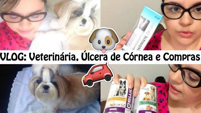 Vlog Consulta Veterinaria, Minha Filha Pet Shih Tzu Kiara Com Ulcera de Cornea, Comprinhas Pet e Na Farmacia - Loi Curcio