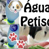 Tudo Sobre Alimentação Canina/Pet: Quantidade e Horários de Água e Petiscos Para Filhotes, Adultos e Idosos
