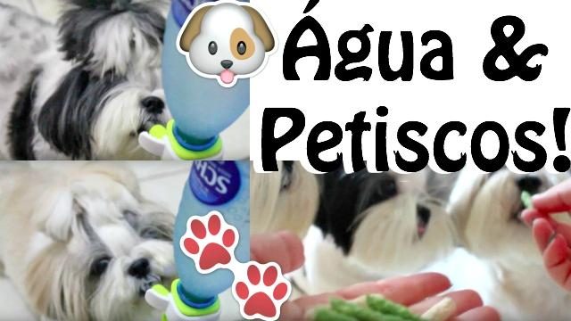 Tudo Sobre Alimentacao Canina Pet Quantidade e Horarios de Agua e Petisco Para Filhotes, Adultos e Idosos – Loi Curcio