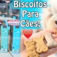 Biscoitos Para Cães/Cachorros de Carne, Frango, Hipoalergênico e Vegano | The Pet's Taste | Veda5.2
