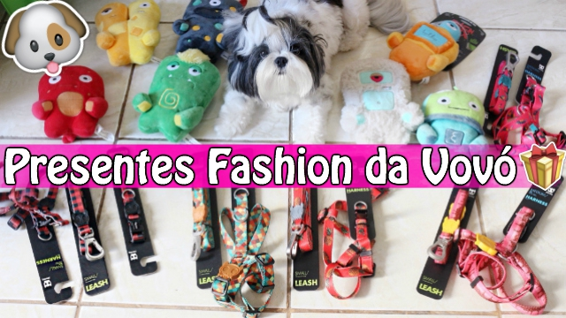 Compras Fashion Para as Meninas (Shih Tzu) | Presentes da Vovo (Zee Dog) | Veda8 - Loi Curcio