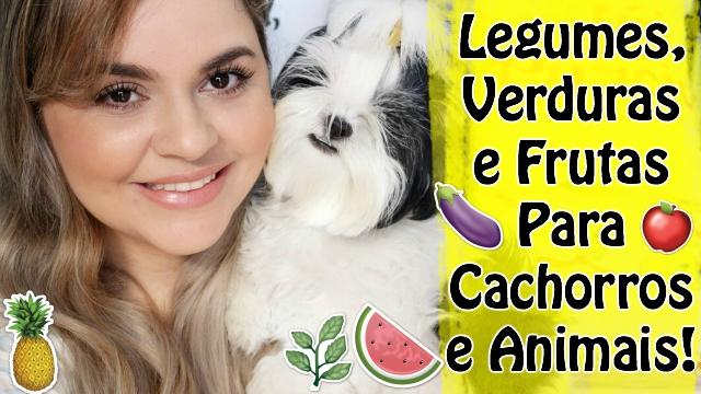Legumes, Verduras e Frutas Que Seu Cachorro Ou Animal Pode Comer Sem Problemas | Veda 14 - Loi Curcio