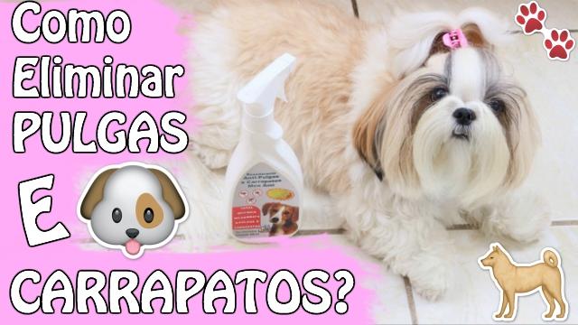 Desodorante Anti Pulgas e Carrapatos MonAmi Para Caes + Efeito Repelente de Insetos | Veda31 - Loi Curcio
