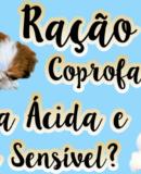 Ração da Hill's Trata Coprofagia, Lágrima Ácida e Pele Sensível Em Cães?