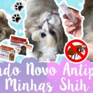Hectopar Spot Antipulga Altamente Eficaz Para Cães e Gatos da MonAmi Barato #VEDA27