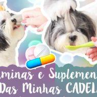 Quais Vitaminas e Suplementos Eu Dou Para Minhas Shih Tzu (Cachorrinhas) E Para Quê? #VEDA21