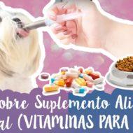 Quais Vitaminas O Cachorro Precisa + Vantagens e Desvantagens De Dar Suplemento Alimentar Ao Animal #VEDA18