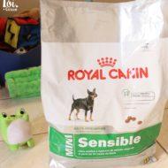 Ração Mini Sensible Royal Canin Para Cães Adultos/Maduros de Raças Pequenas e Paladar Sensível/Exigente