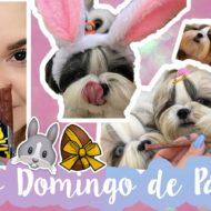 Vlog: Domingo de Páscoa Meu e das Minhas Shih Tzu + Chocolate Para Cães #VEDA16